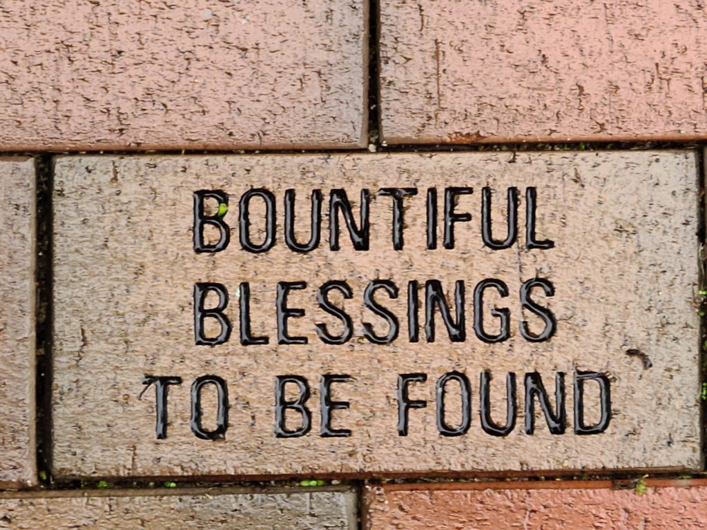 Blessings for Bountiful Fundraising Campaign: April 10 - May 21, 2021